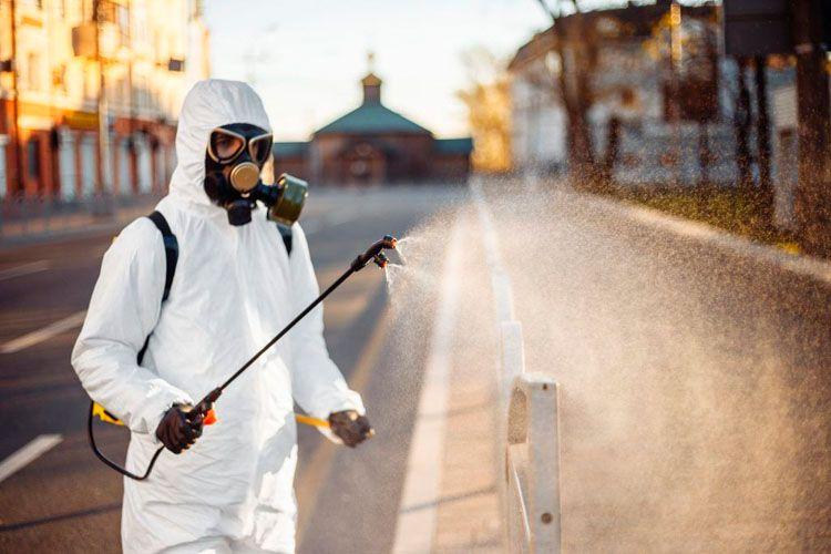 fumigacion plaga garrapatas